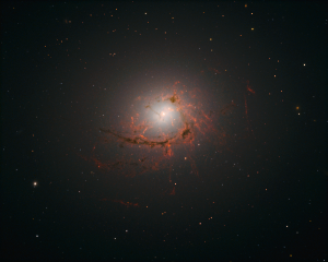 Dusty Filaments in NGC 4696