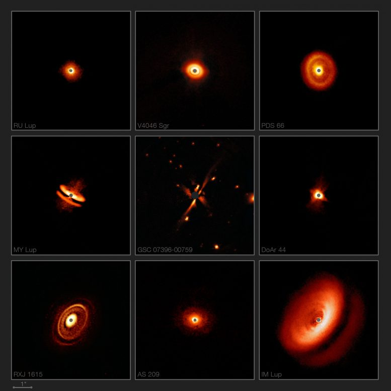 ESO Reveals Fascinating Zoo of Discs Around Young Stars