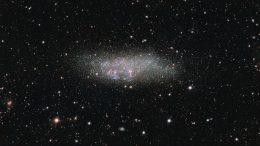 ESO Views Wolf-Lundmark-Melotte Galaxy