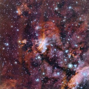 ESO Views the Prawn Nebula
