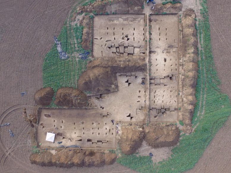 Early Neolithic Settlement Excavation Area