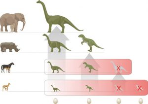 Egg-laying the end for dinosaurs