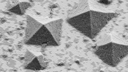 Electron Microscope Crystals Form Surface