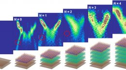Electronic Characteristics of 2D Semiconductor