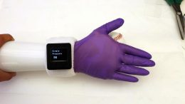 Electronic Glove