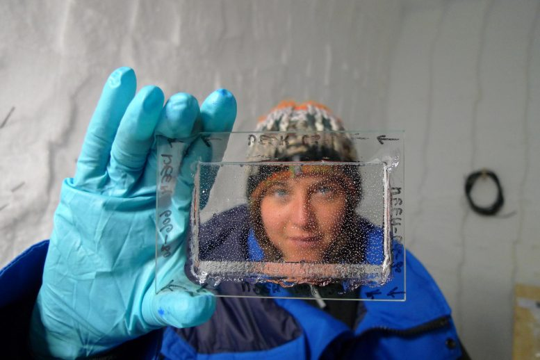 Emilie Capron Looking Through Ice Core