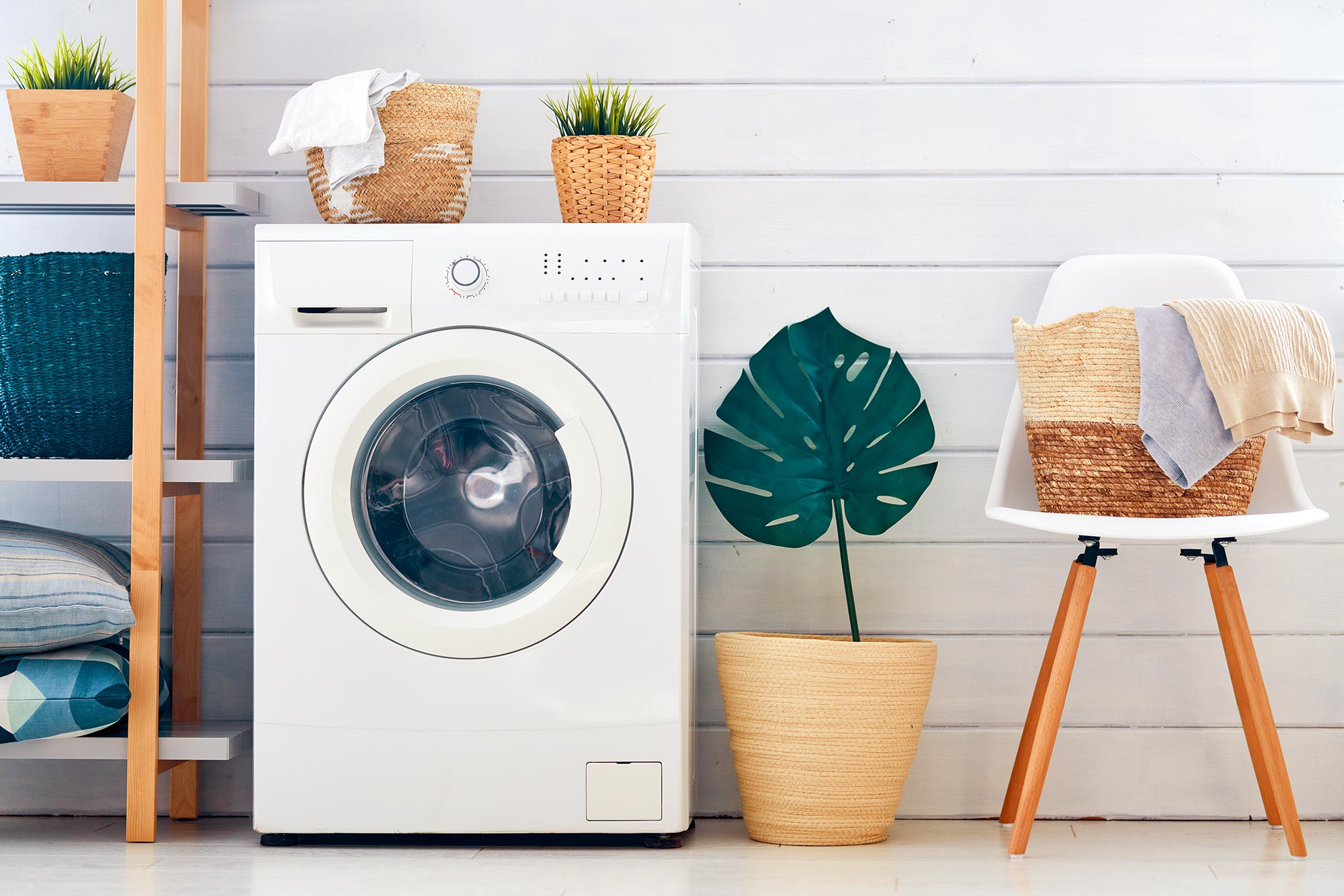 Warning: Dangerous Pathogens May Be Lurking in Your Energy ... on Washing Machine  id=33146