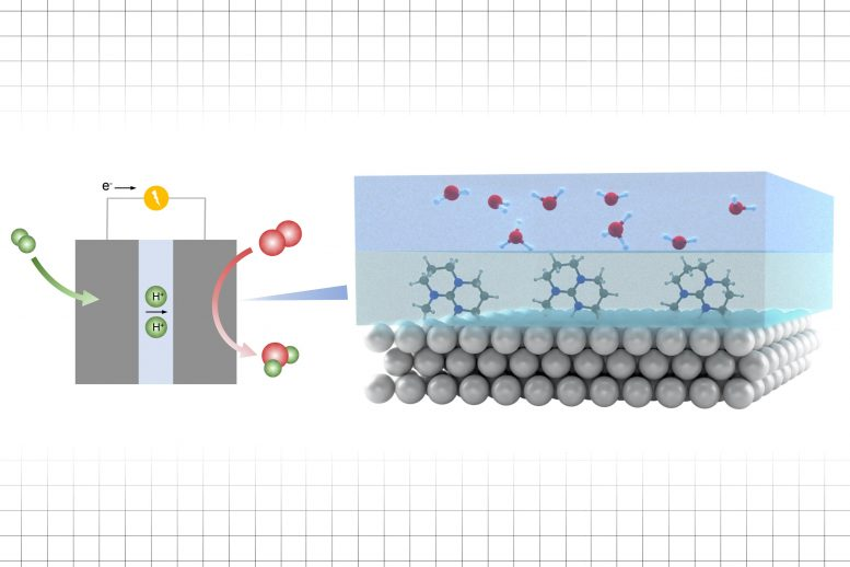 Enhancing Reaction Rates in an Electrocatalytic Process