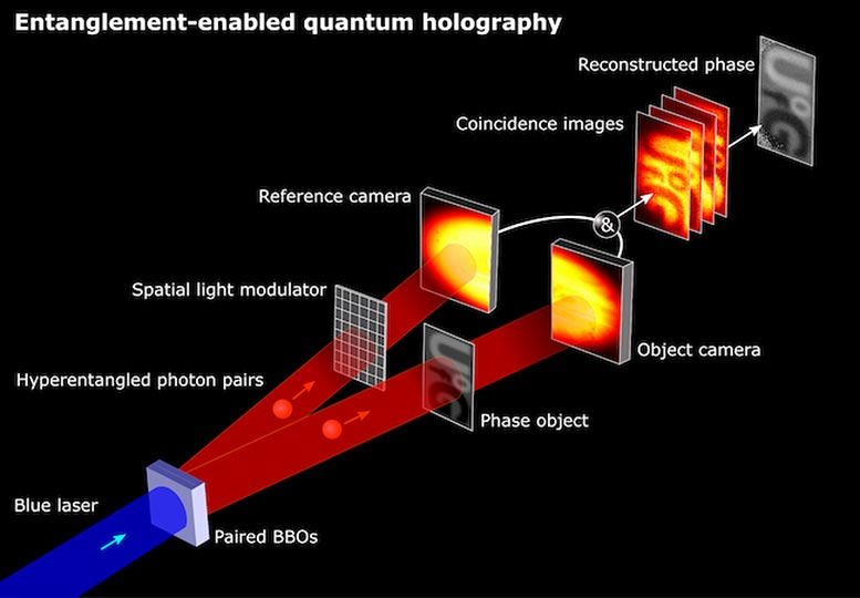 Entanglement-Enabled Quantum Holography