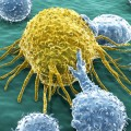 Evidence That White Blood Cells Can Fuse with Cancer Cells and Initiate a Tumor