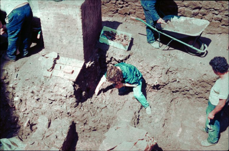 Excavation of Collective Grave