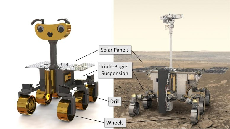 ExoMy ExoMars Rovers Compared