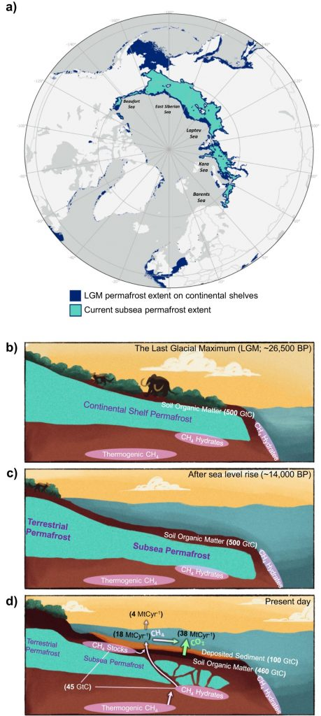 Extent and Carbon Dynamics of the Subsea Permafrost Domain