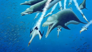 Extinct Giant Dolphins Crop