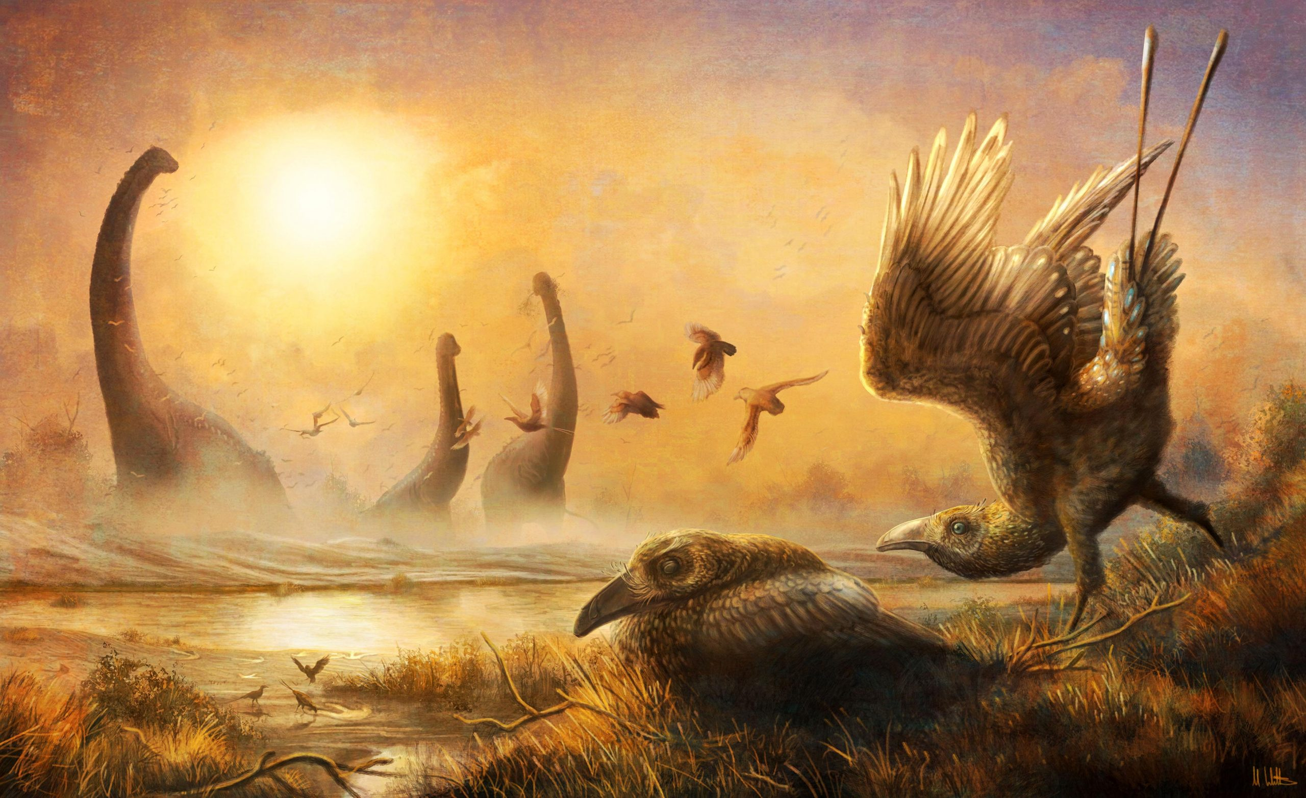Hidden Diversity During the Age of Dinosaurs Revealed by Early Bird With Tall, Sickle-Shaped Beak - SciTechDaily