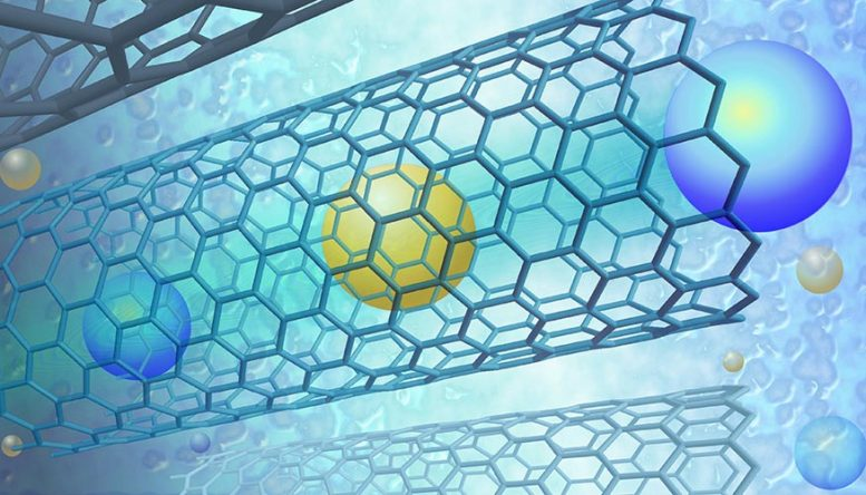 Fast Ion Permeation Inside Single-Walled Carbon Nanotubes