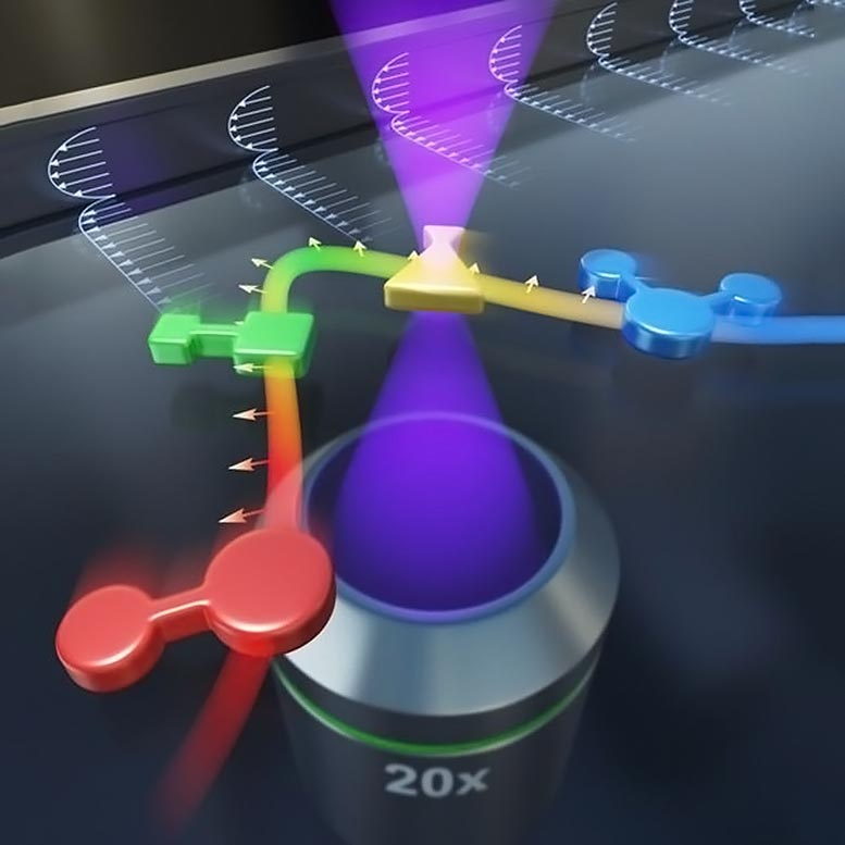 Filtering Microparticles