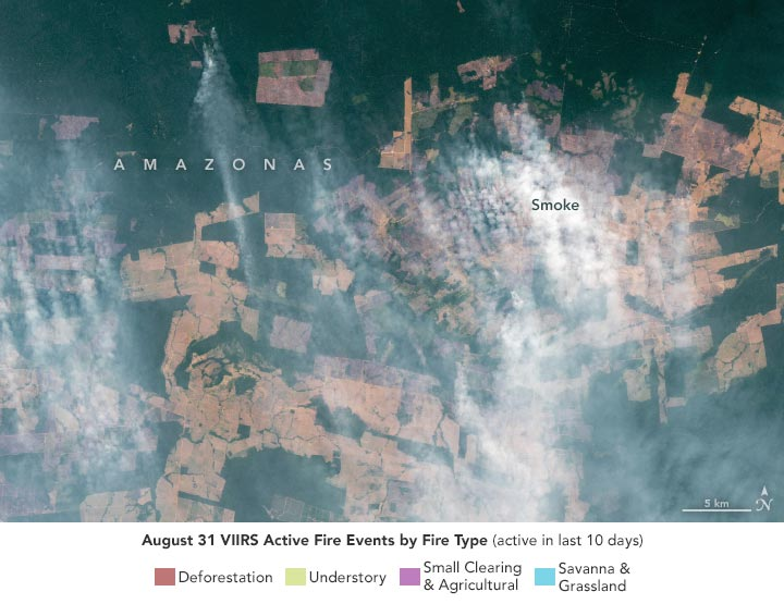 Fire Events Amazonas August 2021 Annotated