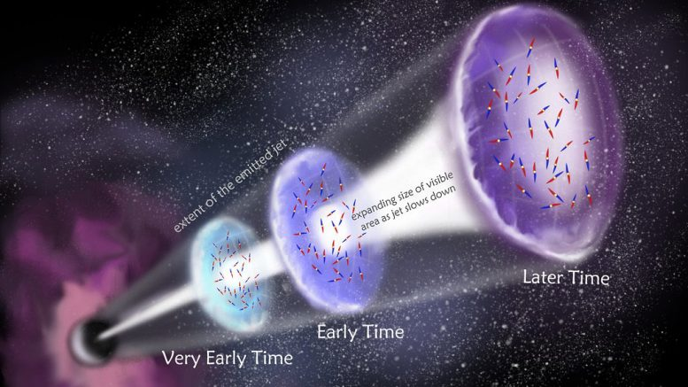 First Detection of Polarized Radio Waves in Gamma Ray Burst Jets