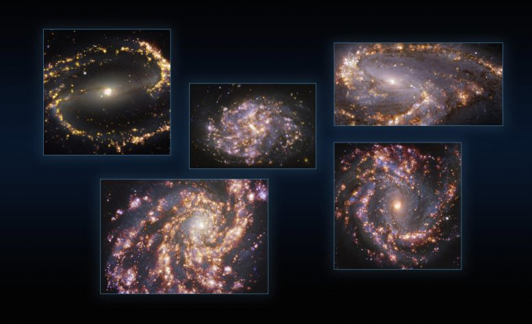 Five Galaxies As Seen With MUSE