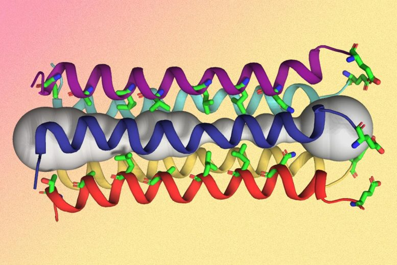 Five-Helix Bundle of the SARS-CoV-2 Envelope Protein E