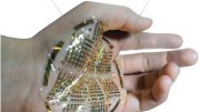 Flexible Bioelectronic Devices
