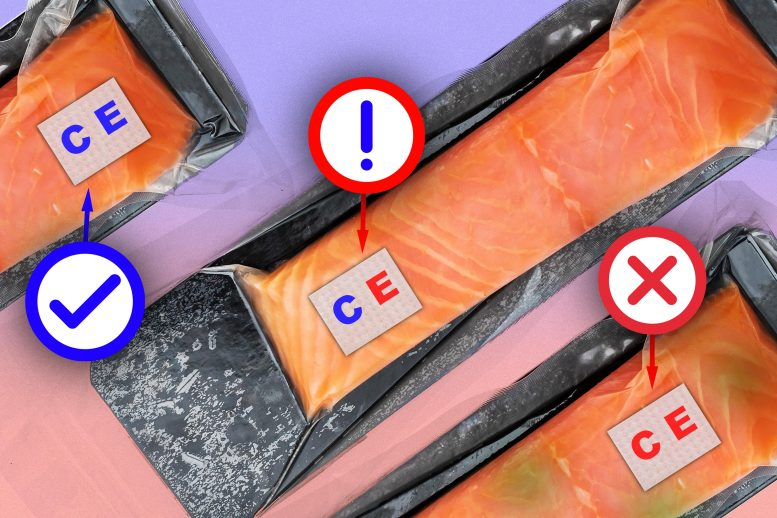 Food Sensor Raw Fish