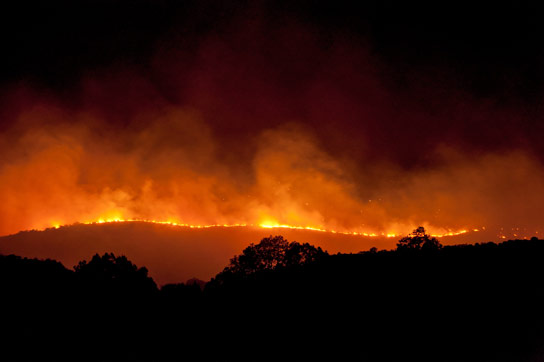 Forest Emissions and Wildfires Explain Why Ancient Earth Was So Hot