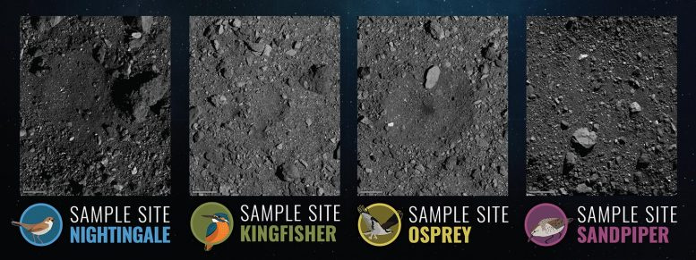 Four Candidate Sample Collection Sites Bennu