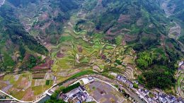 Fragmented Habitat Caused by Intense Human Utilization in Zhejiang Province