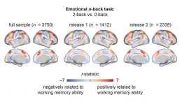 Frontoparietal Brain Activation
