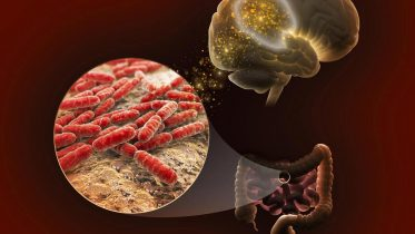 Scientists Explore Molecular Connections Between Genetics, Gut Microbiome, and Memory