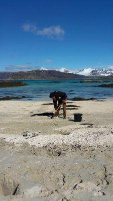 Ghost Worm Collecting Northern Norway