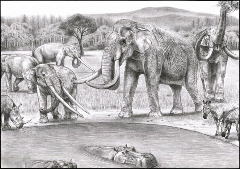Global Climate Dynamics Drove the Decline of Mastodonts and Elephants