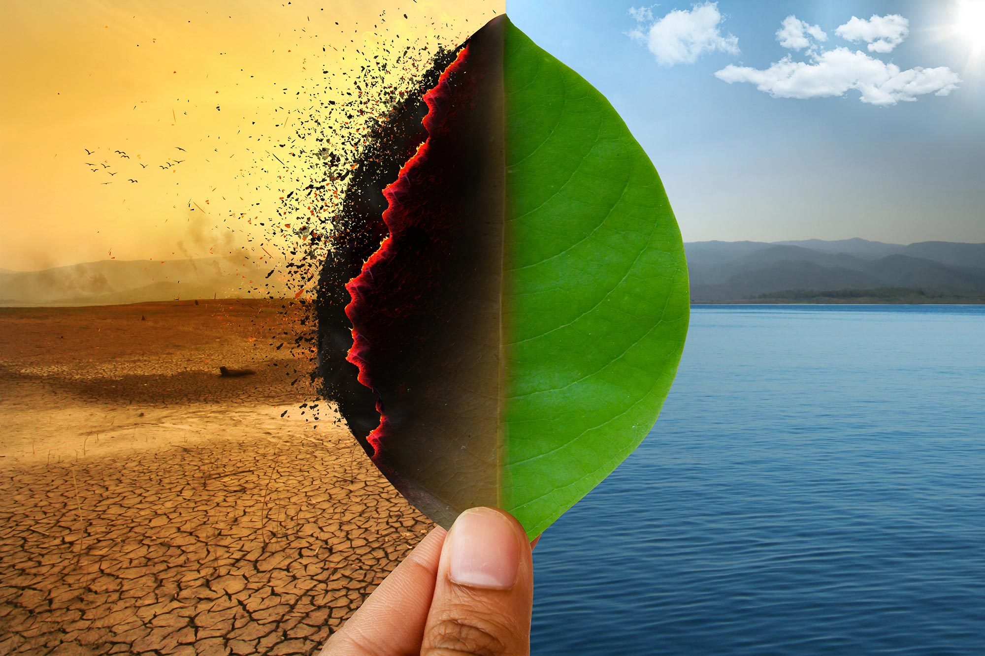 We do to cope with climate change