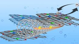 Graphene Carbon Nanotube Catalyst
