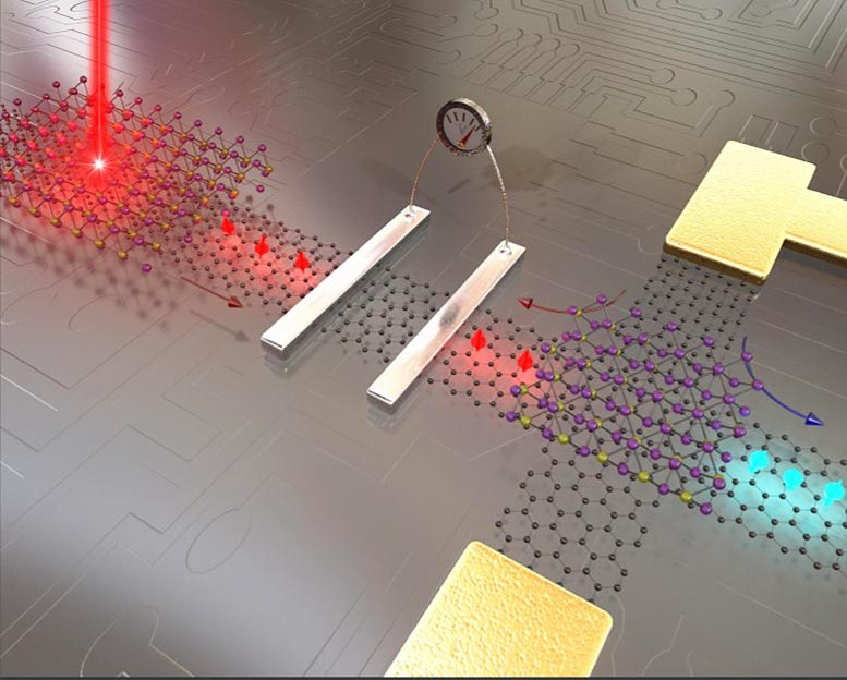 Graphene Spintronics