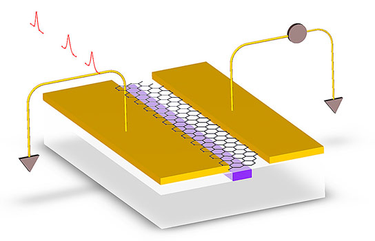 Graphene Used in Photodetectors