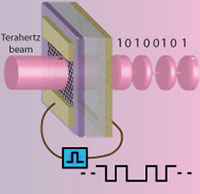 Graphene-based terahertz devices