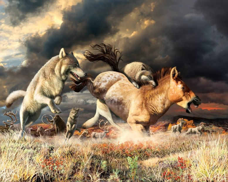 Gray Wolves Hunting in the Pleistocene