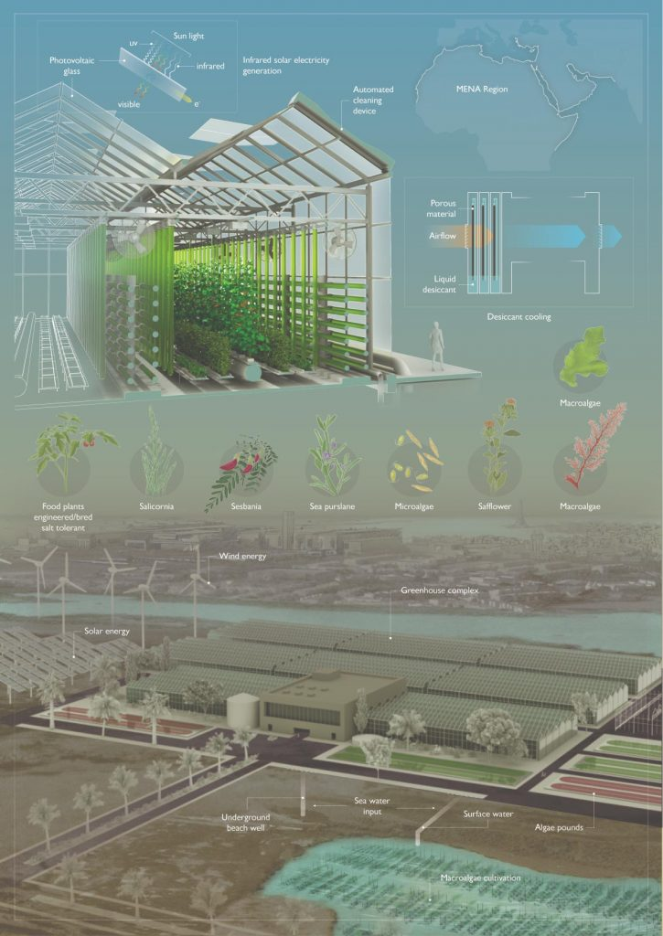 Greenhouses of the Future