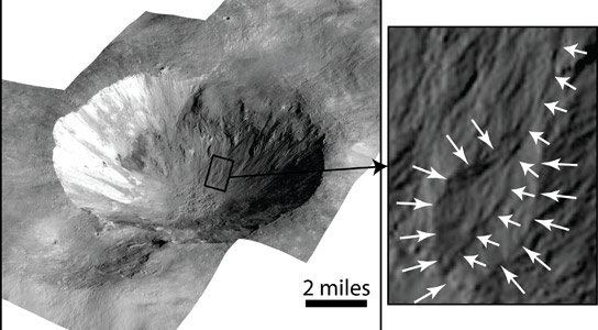Gullies Suggest Past Water on Vesta