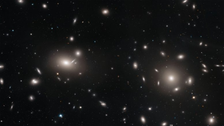 Hubble Explores the Coma Cluster's Galaxies