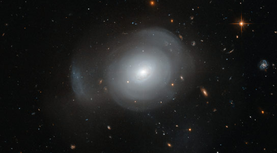 Hubble Image of Elliptical Galaxy PGC 6240