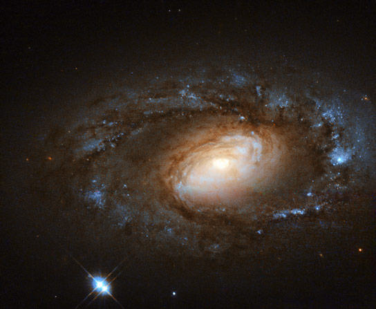 Hubble Image of the Week NGC 4102