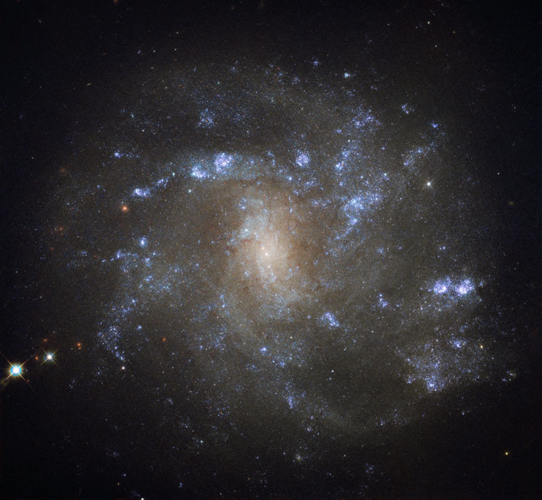 Hubble Image of the Week Spiral Galaxy NGC 2500