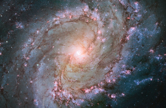 Hubble Mosaic of the Southern Pinwheel