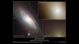 Hubble Observes Rare Blue Stars in Andromeda's Core