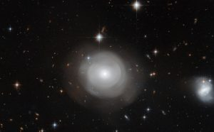 Hubble Views Ghostly Shells of Galaxy ESO 381-12