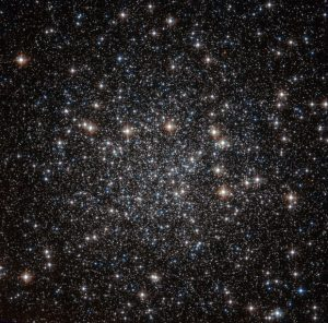 Hubble Views Globular Cluster NGC 4833